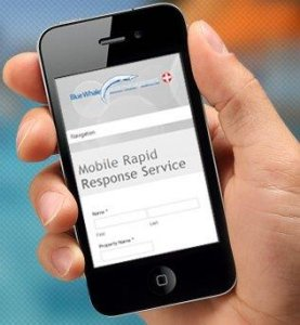 Mobile Rapid Response For Blue Whale Pool Service